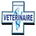 800x600_clinique-veterinaire-de-l-europe-4844